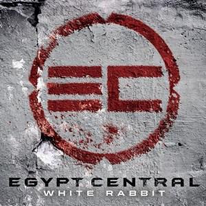 Egypt Central White Rabbit